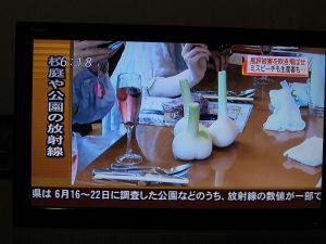 ニュース画面-2